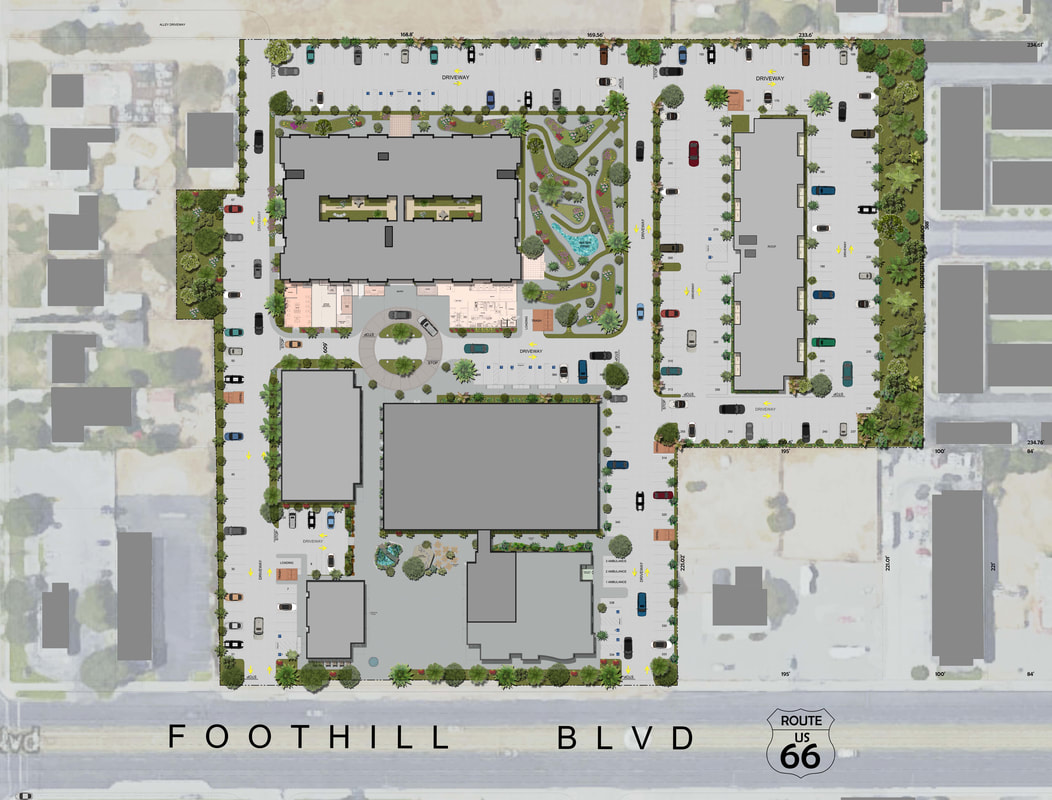 Color 2D Site Plan_Services_Real Estate_Commercial Space Planning_01